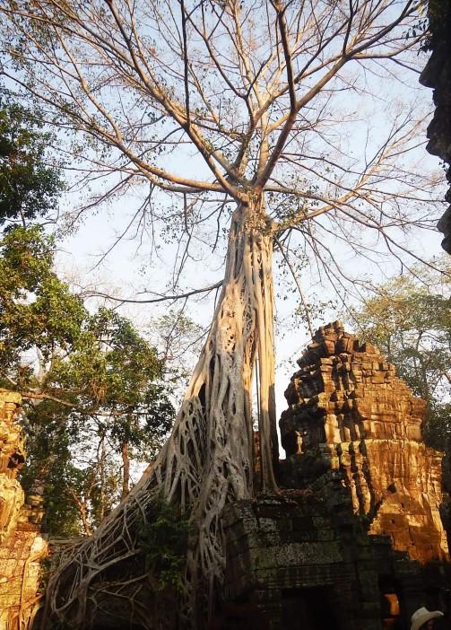 cambodia11