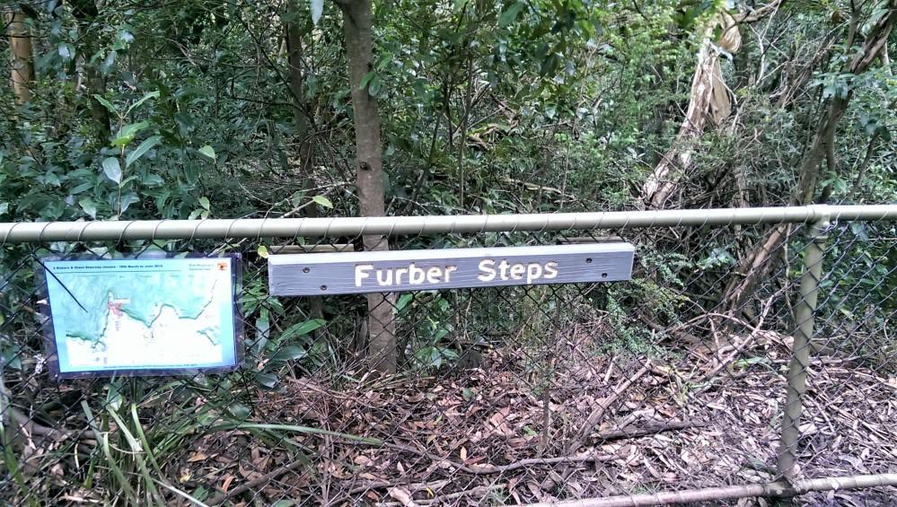 furber-steps-1