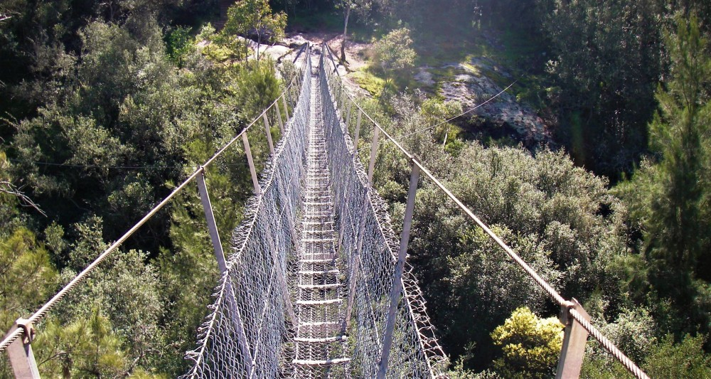 Swinging_bridge.JPG